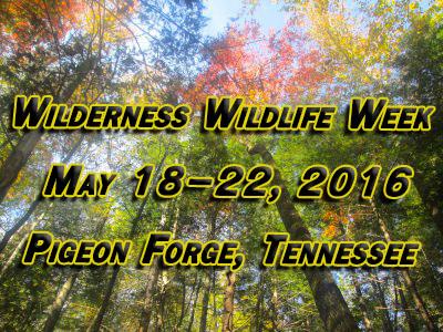 Vertically Challenged Mom Wilderness Wildlife Week